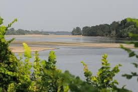 Dans la vallée d'Authion, l'irrigation des cultures menacée par une Loire trop basse
