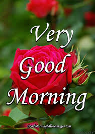 best good morning images with rose