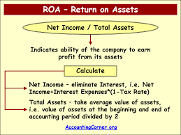 roa return on assets
