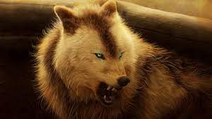 2560x1440 Angry Wolf 1440P Resolution ...