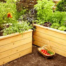 self watering garden planter