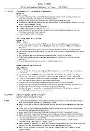 Warehouse Manager Resume Sample Data Warehouse Manager Resume Samples Velvet Jobs 13