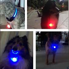 Led Lights For Dog Walking Pet Night Safety Led Clip On Flashlight Pets Supplies Accessories Cat Dog Collar Leads Lights Waterproof Walking Spotlight