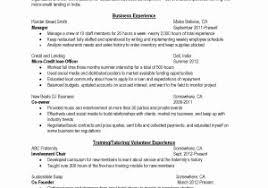 Wordpress Resume Themes Free Lovely Free Resume Wordpress Theme