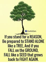 Be Stands For Fuseful Gen If You Stand For A Reason Be Prepared To Stand
