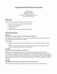 career job essay kinesiology