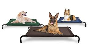 steel frame cot style raised pet bed