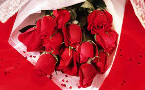 Romantic Roses Hintergrundbilders Hd ...
