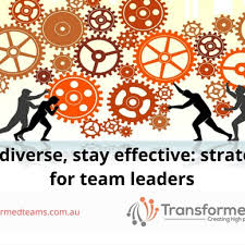 goodbye teamwork woes how to banish them for good transformed teams stay diverse stay effective strategies for team leaders
