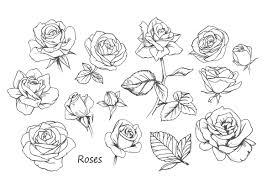 大人の花塗り絵薔薇バラ特集無料コロリアージュ もくもくん