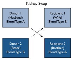 Paired Kidney Exchange Johns Hopkins Comprehensive