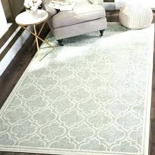 dog friendly area rugs pet friendly area rugs dog mercer rug for dogs hair best dog dog friendly area rugs