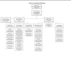 36 Meticulous Health Care Organizational Chart