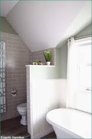Pflanzen Für Badezimmer Pflanzen Im Badezimmer Besten Vorschläge Für