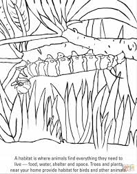 Small Picture Pages For Kids Free Caterpillar Coloring Page Printable