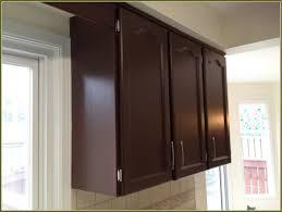 spray paint kitchen cabinetsSpray Painting Kitchen Cabinets Diy  Home Design Ideas