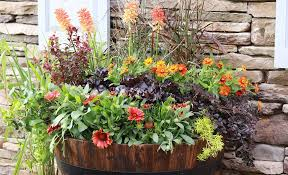 garden half barrel whiskey planter