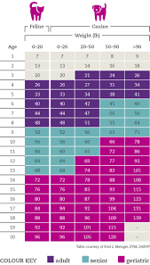 Dog Age Chart By Weight Cat Dog Age Calculator Whats The Real Age Of Your Pet
