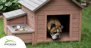 diy insulation for a dog kennel