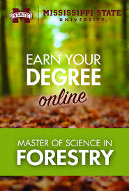 ideas about graduate degree psychology degree college of forest resources distance learning programs mississippi state university