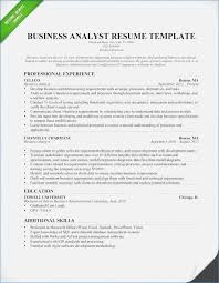 Credit Analyst Cover Letter Sample Beautiful A Book Of Essays