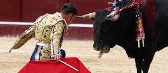 Resultado de imagen para corridas de toros
