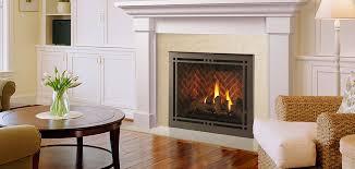 meridian platinum direct vent gas fireplace