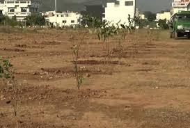 SAMAA - <b>Islamabad</b>: <b>Fruit</b> trees planted for the underprivileged