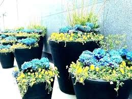 ideas for large flower pots outdoor plants in pots ideas large outdoor planter big flower pots