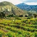 San Pasqual Valley