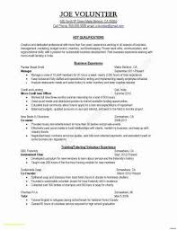 Great Resume Formats Cool Resume Format Rules 28 Printable Examples Great Resume Layouts