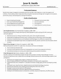 Technical Project Manager Resume Resume Work Template