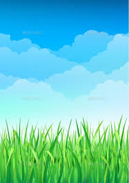 grass and sky backgrounds. Plain And Grass And Sky Backgrounds Green Blue Background By Olga  Shuma Inside P