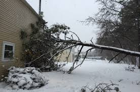 Winter Storm Jonas - Weight of Ice and Snow, Wind and Flooding ...