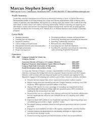 Example Resume Summary Musiccityspiritsandcocktail Com