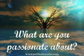 what are you passionate about nadine brandes