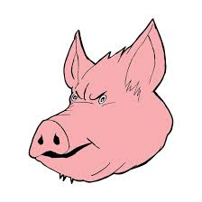 894x894 pig face by isa81