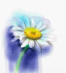 abstract watercolor painting white gerbera daisy flower stock ilration ilration of banner