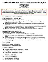 Resume Objective Example Gorgeous Resume Objective Examples For Students And Professionals RC