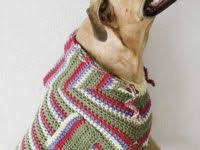 Free Crochet Dog Patterns Awesome These Free Crochet Patterns Will Give You The Best Dressed Dog In Town