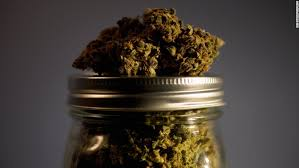 medical marijuana laws reduce painkiller overdoses cnn there 39 s been a lt a href quot