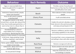 Bach Flower Remedies Chart Bach Flower Remedies For Dogs Behaviour Modification
