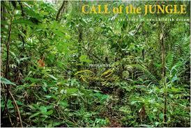 essay ruben solaz photography essay jungle
