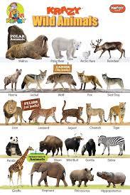 Pin By Jessa Lowell On Animal Habitats Wild Animals