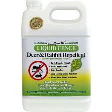 deer repellent for gardens. Liquid Fence Deer \u0026 Rabbit Repellent For Gardens N