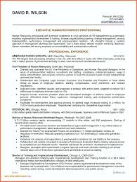 Service Tech Resume Service Technician Resume Sample Technician Resume Example Field