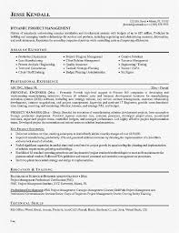 Safety Manager Resume Resume Samples For Safety Manager Awesome Gallery Project Manager