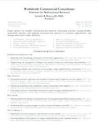 Functional Summary Examples Classy Examples Of Resume Summary Resume Ideas Pro