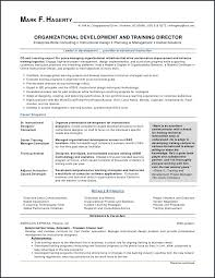 Google Drive Resume Magnificent Customer Service Resumes Templates And New Google Drive Resume