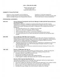 Business Resume For Business Development Manager